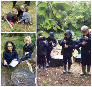 Egyptians, Funny Bones and Medicine in Outdoor Learning